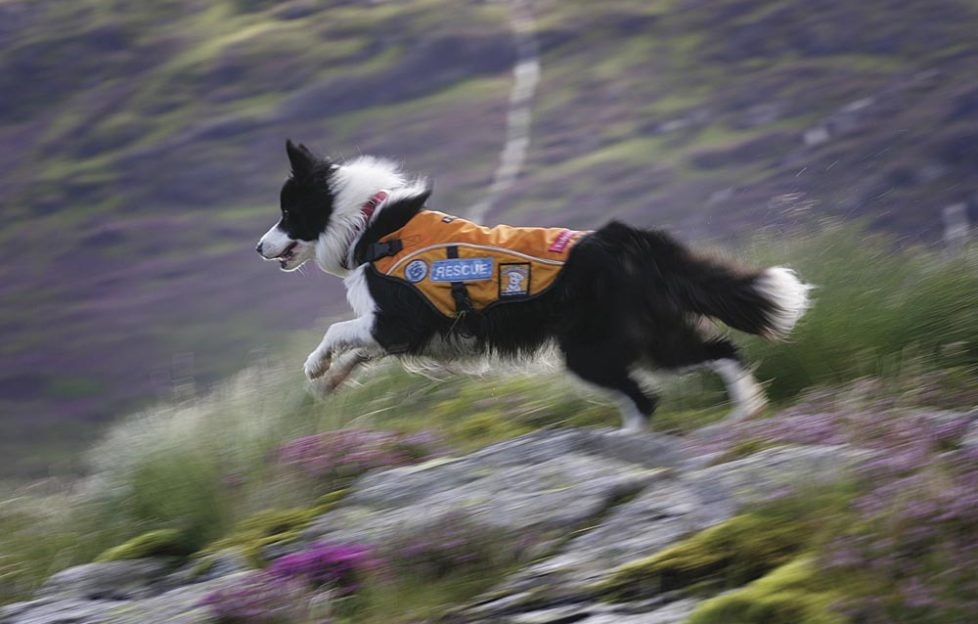 Training in the Galloway Hills