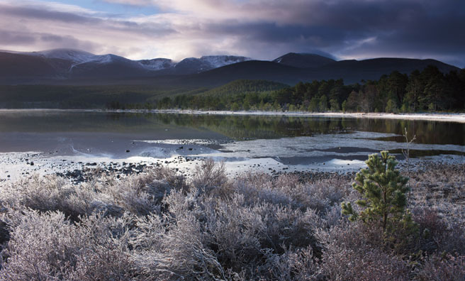 Loch Morlich and the Cairngorms at dawn