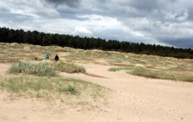 Kinshaldy Beach at Tentsmuir forest, Fife