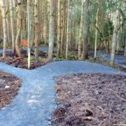 Part of the mountain bike track