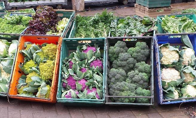 Fresh, seasonal vegetables at St Andrews Farmers' Market