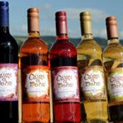 Sample the unique fruit wines
