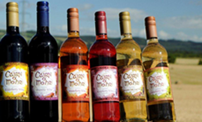 Sample the unique fruit wines