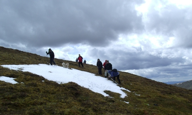 Snow - in May! Photo by Dave Gee
