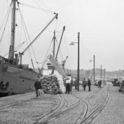 Montrose Docks in 1957 - before the arrival of the oil industry. Photo courtesy of Angus Archives.