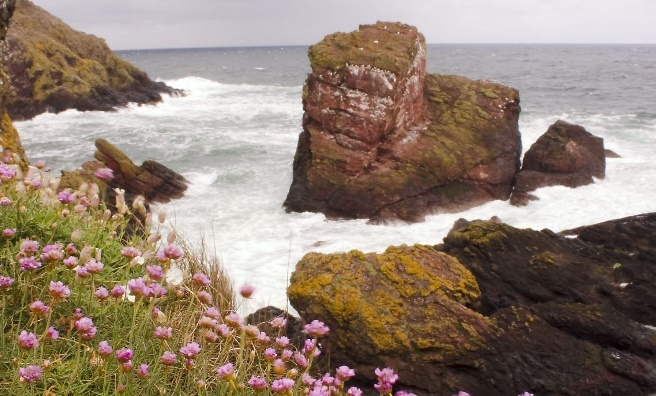 A stormy day at St Abb's Head. Photo courtesy of National Trust for Scotland.