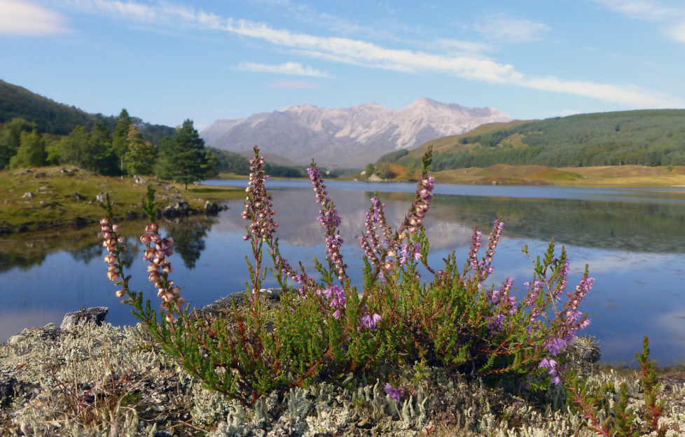 Polly Pullar captures the beauty of Wester Ross
