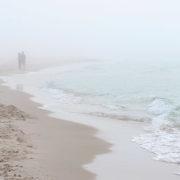 Our Haunted Coast Carousel