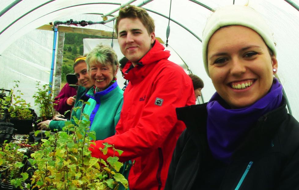 Volunteers working in nursery poly tunnel