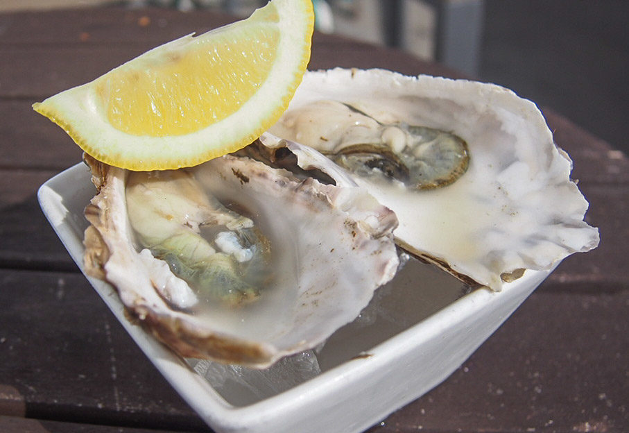 Oysters - Café Fish
