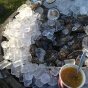 From now on, I will only eat oysters on the banks of a mountain loch, hidden away in a forest!