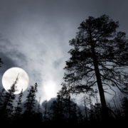 Awaiting the darkness... Pic: Shutterstock