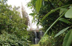 The Japanese Gardens at Stobo Castle