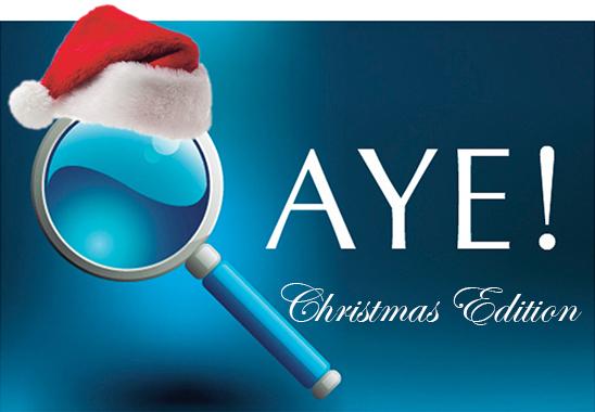 Christmas-Q-Aye-Carousel