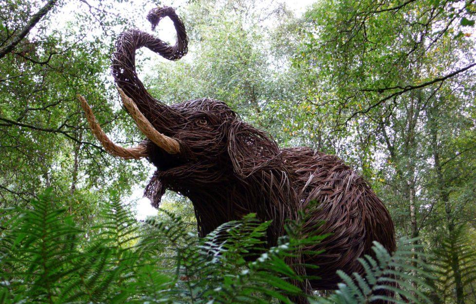 Don't miss Trevor Leat's wicker sculptures in Glenkens.