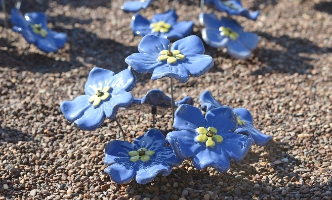 800 handcrafted ceramic forget-me-nots launched the hospice's appeal. Photo by Neil Hanna