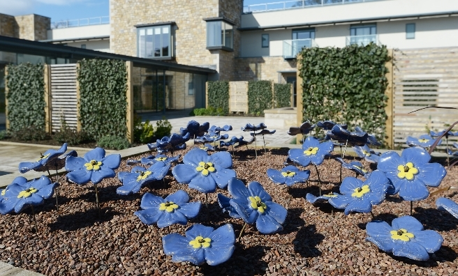 Forget-me-nots at St Columba's Hospice will provide a lasting tribute to loved ones. Photo by Neil Hanna
