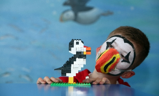 Nine-year-old John MacLeod from Tranent with his lego puffin © Steve Cox