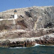The Bass Rock Lighthouse