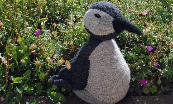 Tammie Junior, who is helping to raise awareness of the light of lost and confused pufflings