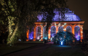 See Edinburgh's Botanic Gardens illuminated at night for the cleverly named Botanic Lights!