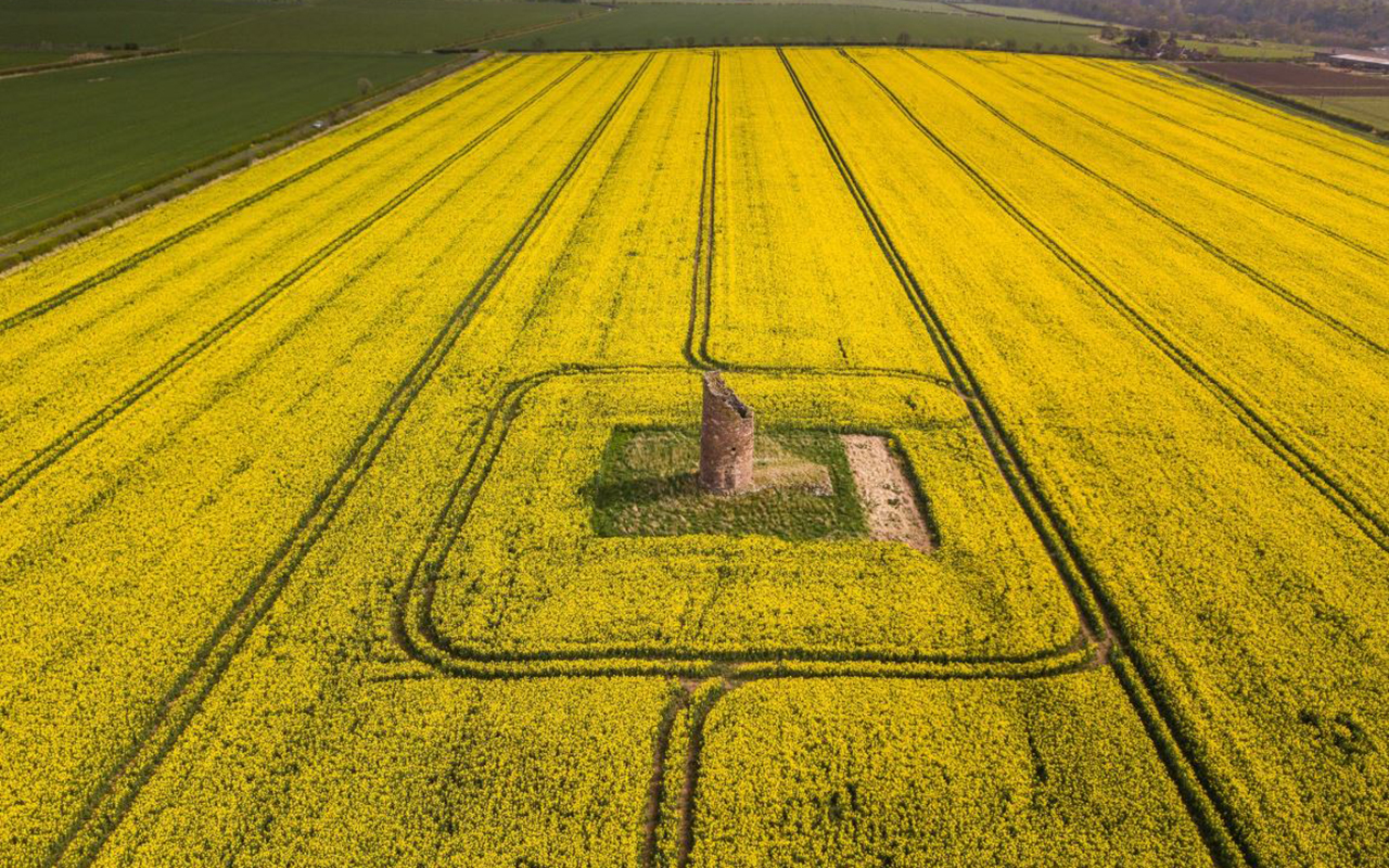 """Drone shot of East Lothian rapeseed feild."" A Radzikowska, @ARadzikowsk"