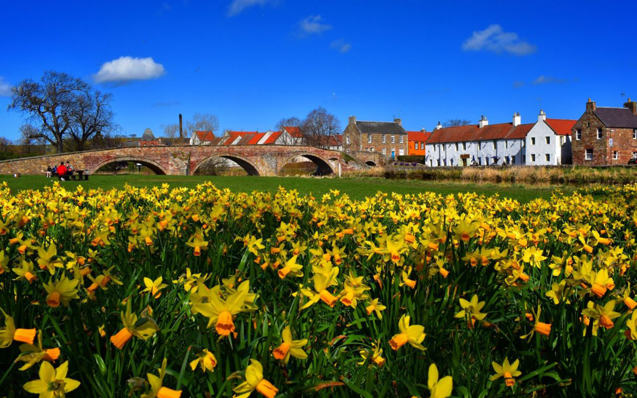 """Spring in Haddington!"" HiddenHaddington, @HiddenHadd."